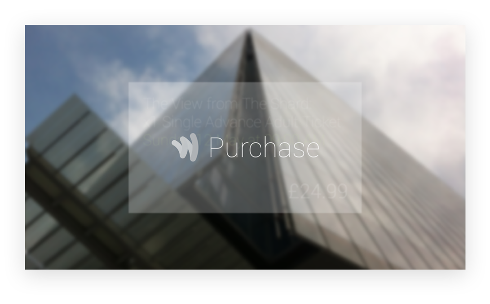 Google Glass - Google Wallet